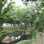 内堀跡(八幡曲輪横)