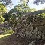 三ノ丸櫓台 鏡石