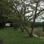 日野川ダム湖岸