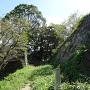 二の丸虎口の石垣