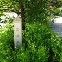 天神曲輪標柱