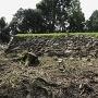 二の丸西曲輪の石垣