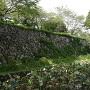 内堀と石垣其の弐