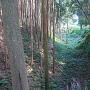 諏訪神社手前の土橋より外堀(南)を望む