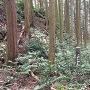 空堀(横堀)跡