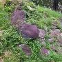 本丸跡の石塁