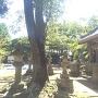 鹿島神社北側土塁から見た桜山方面