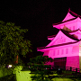 ピンクリボンライトアップ南丹市国際交流会館