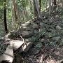 石塁@詰の城への登城路