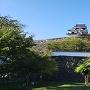 藤棚と大洲城