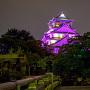 パープルライトアップ大阪城