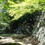 石垣とモミジ