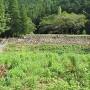 米蔵跡石垣