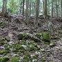 三の丸石垣跡