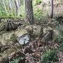 三の丸手前の石積み