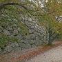 秋景色の本丸御殿と石垣