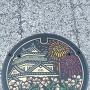 マンホール(岡崎ニューグランド前)