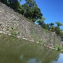 石垣と欄干橋(東側から)