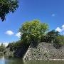 石垣(遊覧船乗場辺りから)