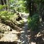 八坂神社西側の地形