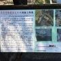 大手門橋塵取石垣の調査と修復の案内板