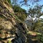 南城南西の石垣