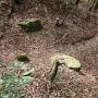 水城口城門跡の礎石