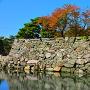 カラフルな多聞櫓跡石垣と桜葉