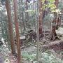 光信公廟所手前で見られる堀跡