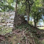 登り石垣③(見上げる)