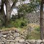 登り石垣➄(見上げる)