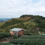 朝日山城を望む