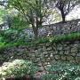 本丸石垣(稲荷曲輪から)