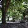 二の丸跡(桜堀へ降りる階段から)