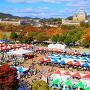 陶器市、皮革フェスティバル、お菓子まつりの会場