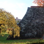 大櫓跡下の石垣(梅林から)