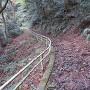 永巌寺からの登城道