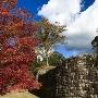 秋の苗木城