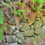 化粧池の石垣、チラリと