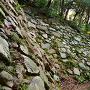 北二の丸 下段石垣