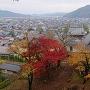 上から見た櫓と紅葉