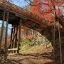 桜雲橋を見上げる