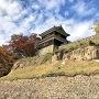 本丸西櫓 (尼ヶ淵から)