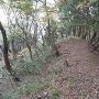 京極丸の土塁