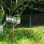 獣害柵手前の案内板