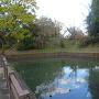 水堀と本丸土塁外側