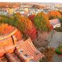 夕映えの天守瓦と秋景