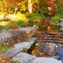 往時のままと伝わる池の一部