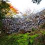 岩盤上に現存の石垣