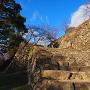 秋晴れに登る大石段